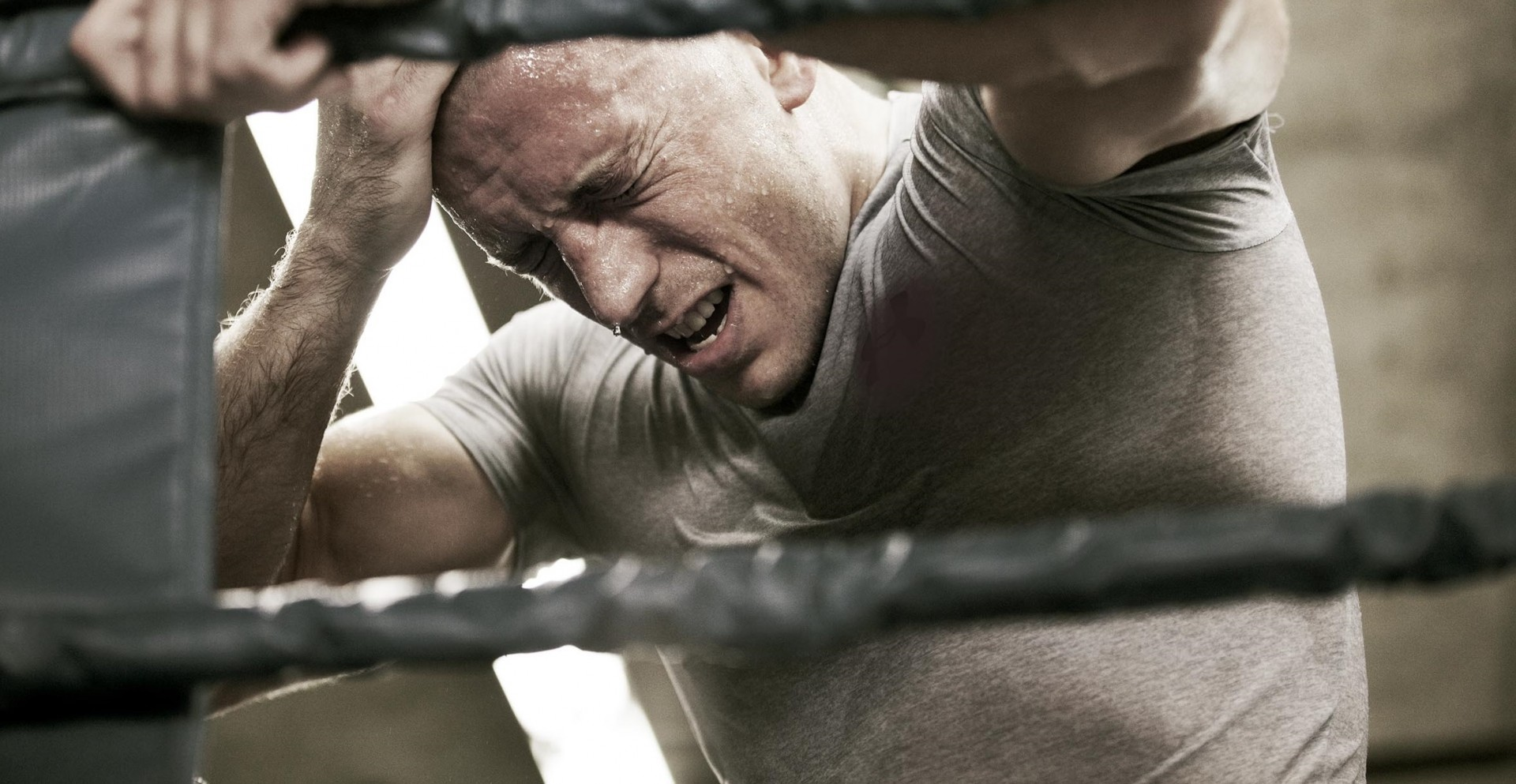 Takedown – The DNA of GSP