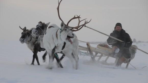 Die Hüter der Tundra Szenenbild