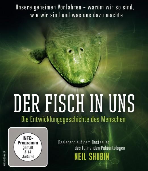 Der Fisch in uns - mit Neil Shubin - Blu-ray