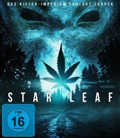 star_leaf_bdohnebox