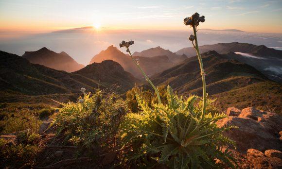Die Kanarischen Inseln Szenenbild