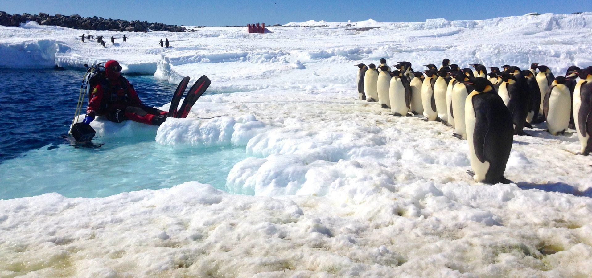 Antarktis 4K
