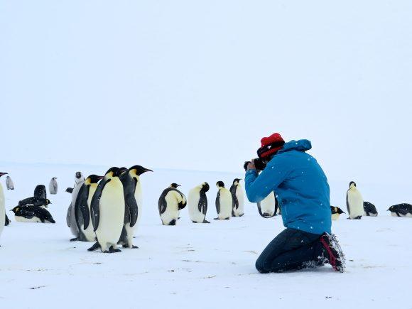 Antarktis Szenenbild
