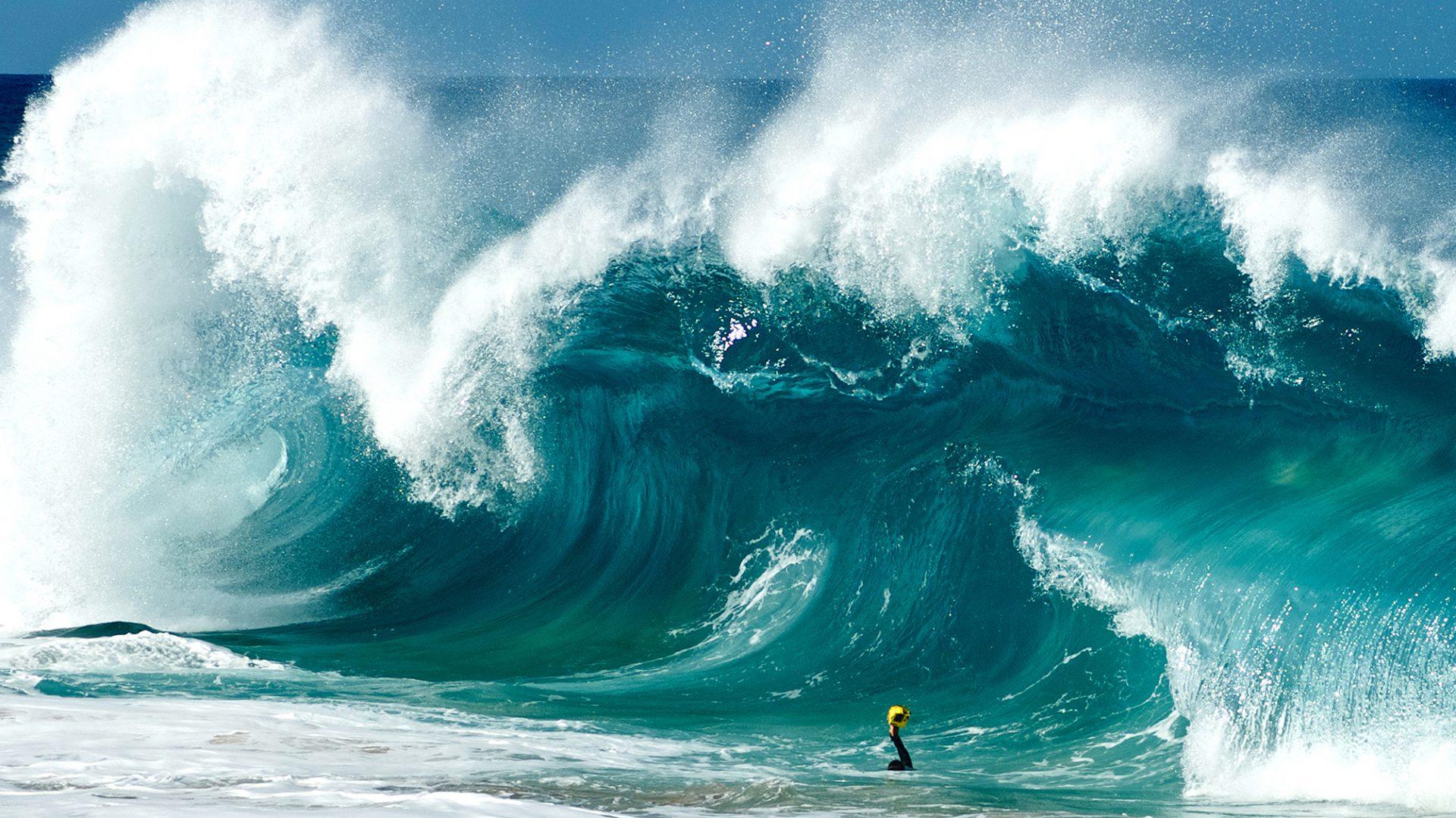 Shorebreak – Die perfekte Welle (Wellenfotograf Clark Little)