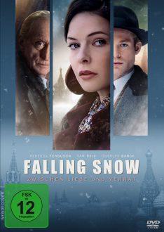FallingSnow_DVD