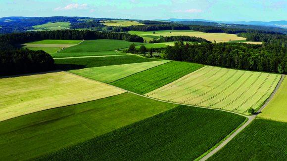 Unser Boden, unser Erbe Szenenbild